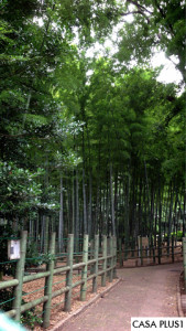 suzumenooyado1